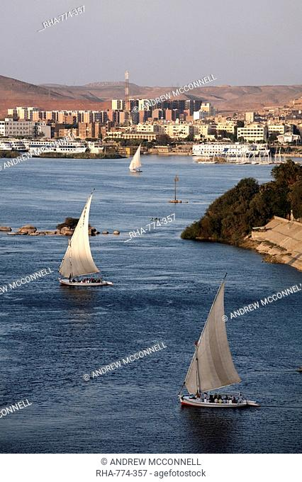Feluccas sailing on the river Nile at Aswan, Egypt, North Africa, Africa