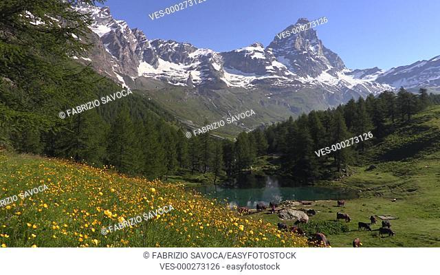 Mount Cervino or Matterhorn, Aosta Valley, Italy