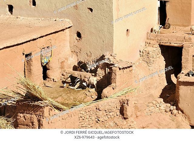 El Hot village, Vallée des 1000 Kasbah, Valley of the thousand kasbah, Vallée des Roses, Rose Valley, El Kelaa M'Gouna, Ouarzazate province, Sous-Massa-Draa