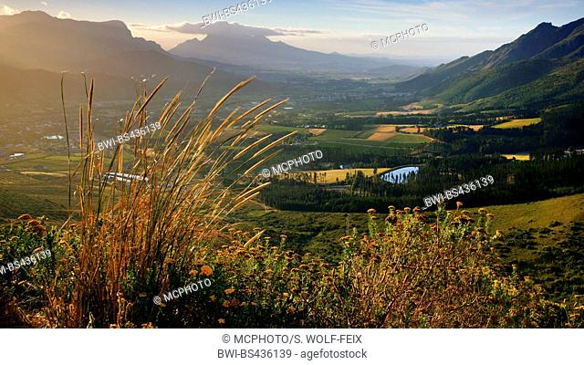 village Franschhoek, South Africa, Western Cape, Franschhoek