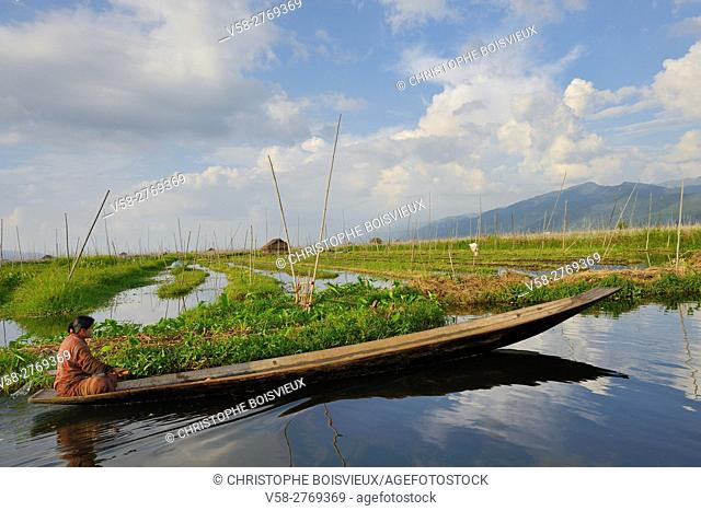 Myanmar, Shan State, Inle Lake, Kay Lar village surroundings, Floating gardens