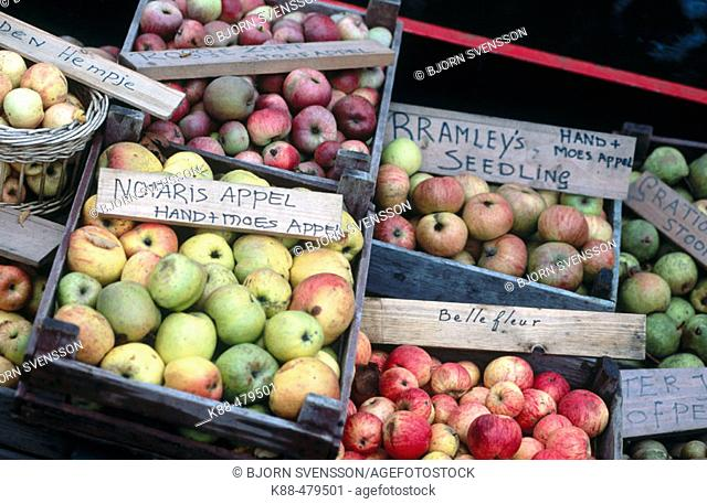 Apples for sale on canal, Enkhuizen. Holland