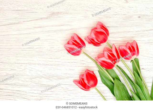 Five pink tulips on a light wooden background. Top view, space for text