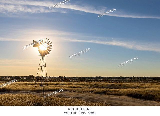 Africa, Botswana, Kgalagadi Transfrontier Park, Kalahari, wind wheel at waterhole Lanklaas