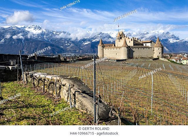 Castle, Aigle, Aigle, Switzerland, Europe, canton, Vaud, castle, vineyard