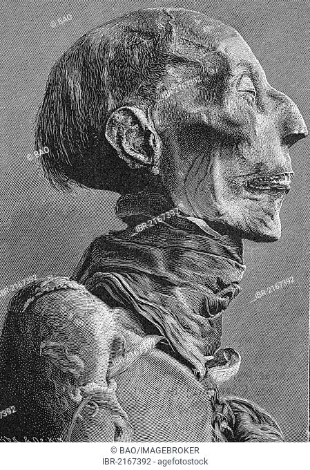Head of the mummy of Ramses II, Ramses the Great, ca. 1303 - 1213 BC, one of the most important rulers of ancient Egypt, historical engraving, 1880