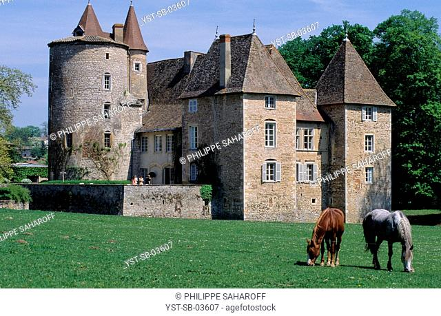 Outdoors, castle, Messimy, Rhône-Alpes, France