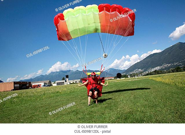 Skydiver landing parachute on field. Steering and slowing his canopy by pulling break toggles, Locarno, Tessin, Switzerland