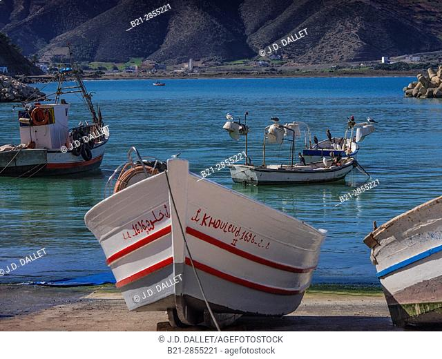 Morocco, at Sheba, on the northern Mediterranean coast