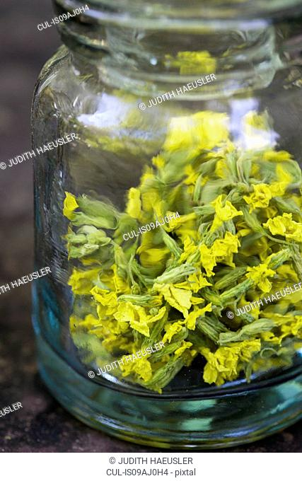 Jar containing dried cowslip. Used for tea to treat cough and rhinitis