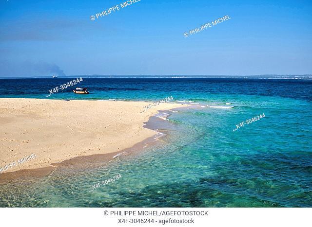 Tanzania, Zanzibar island, Unguja, Stone Town, unesco world heritage, Changgu island or Prison island or Turtle island