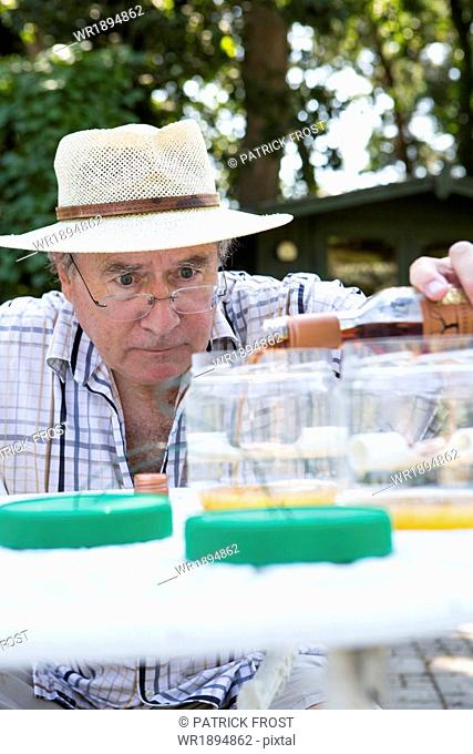 Senior man preparing snail trap, Bournemouth, County Dorset, UK, Europe