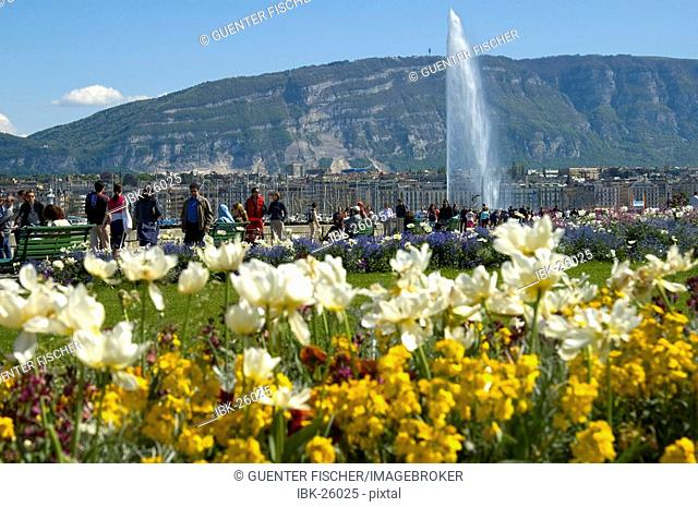 Spring in Geneva View at the Jet d