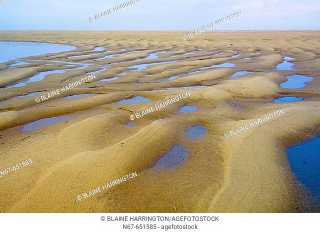 Race Point Beach, Cape Cod National Seashore, near Provincetown, Cape Cod, Massachusetts, USA