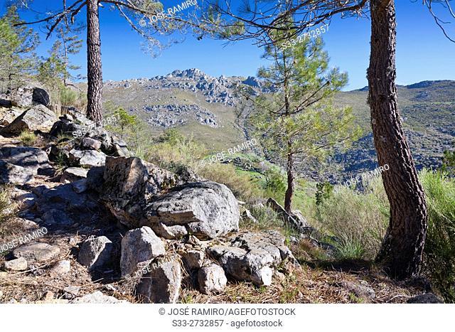 Peluca cliff in the Sierra de Gredos from The Horcajo. Mijares. Avila. Castilla Leon. Spain. Europe
