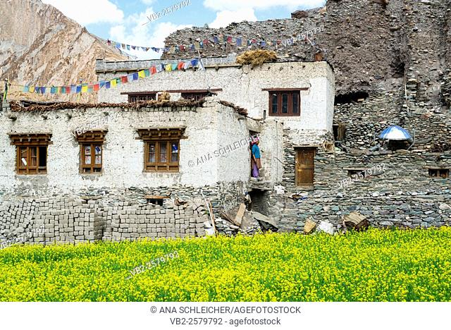 Markha village. Trekking in Markha valley (Laddakh, India)