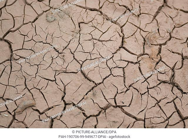 06 July 2019, Baden-Wuerttemberg, Freiburg: Deep cracks can be seen in the dry soil. In southern Baden the drought continues