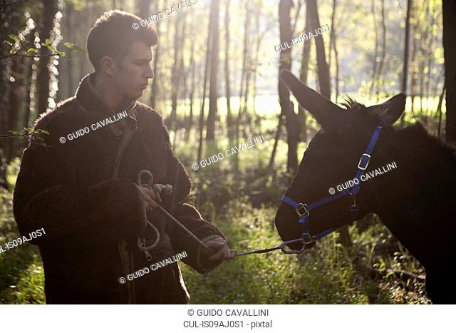Young man pulling reluctant donkey in forest