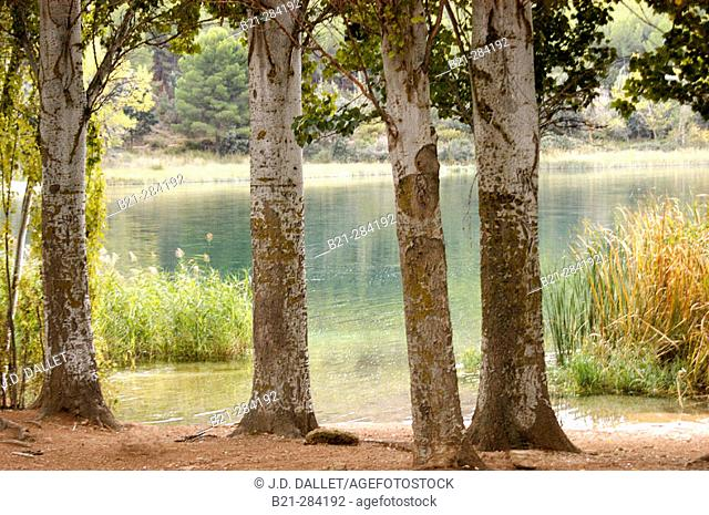 Lagunas de Ruidera Natural Park. Albacete and Ciudad Real provinces. Spain