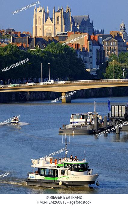 France, Loire Atlantique, Nantes, bus boat of the TAN public trasportation of Nantes and its suburds on Loire River, St Pierre St Paul Cathedral in the...