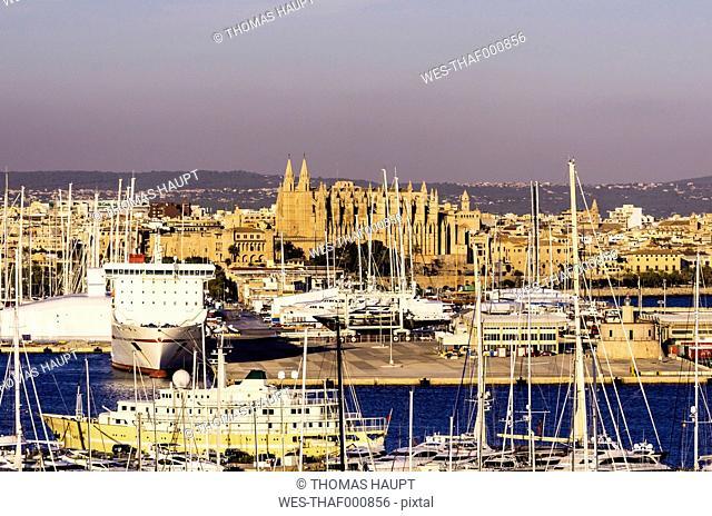 Spain, Mallorca, Palma de Mallorca, Harbour with La Seu cathedral