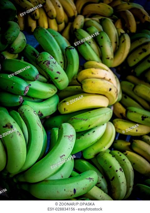 Bunches of bananas for sale