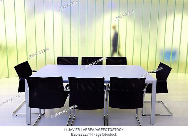 Executives. Meeting room. Office building. Technology Park. Zamudio. Bizkaia. Basque Country. Spain