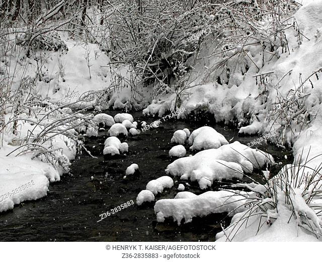 Snow covers rocks on a river Ropa, Poland