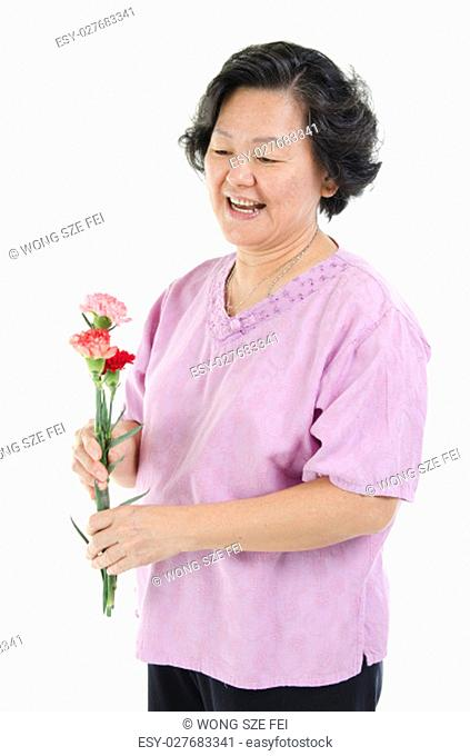 Celebrating happy mothers day concept. Portrait of 60s Asian senior adult woman hand holding carnation flower gift and smiling, isolated on white background