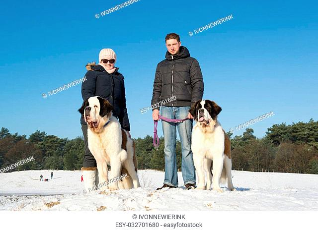 Owners with big rescue dog in snow