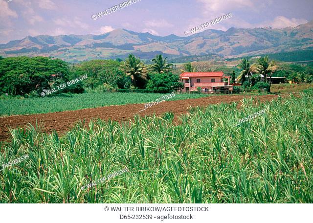 Farmhouse by Ba River & sugar cane field. Ba. Viti Levu. Fiji