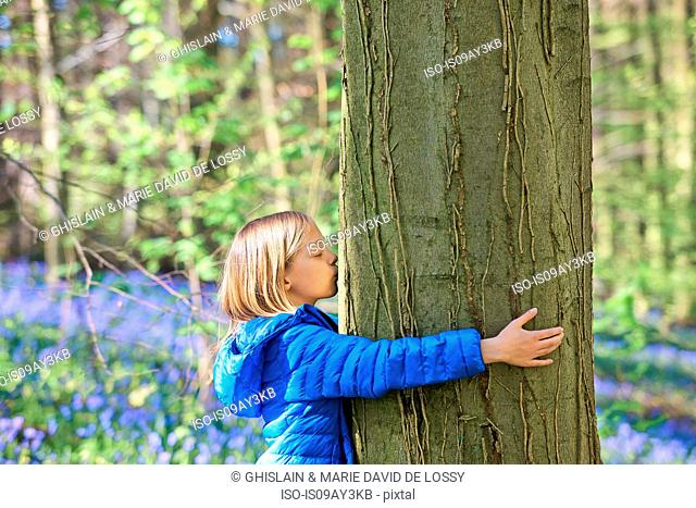 Girl kissing tree in bluebell forest, Hallerbos, Brussels, Belgium