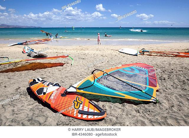 Windsurfing boards and sails lying on the beach, Playa Risco del Paso, Playa de Sotavento, Jandia, Fuerteventura, Canary Islands, Spain