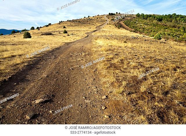 Road to Merina hill. Avila. Castilla Leon. Spain. Europe