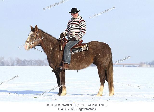 man rides American Paint Horse
