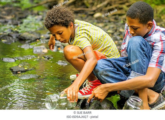 Boys catching fish with jar