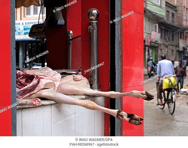 A slaughtered goat lies in the window of a slaughterhouse of the Nepali capital Kathmandu.   usage worldwide. - Kathmandu/Nepal