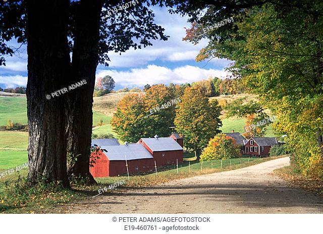 Jenny Farm. Vermont, USA
