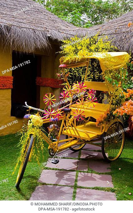 Tricycle with hut decoration jodhpur rajasthan