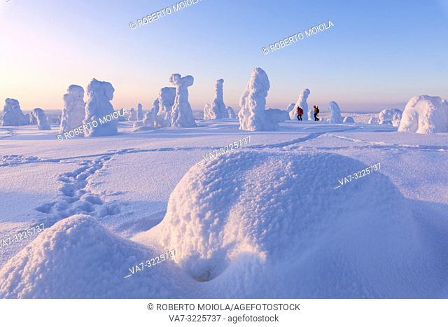 Hikers in the snowy forest, Riisitunturi National Park, Posio, Lapland, Finland