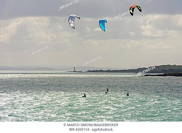 Kitesurfer, Auckland, North Island, New Zealand