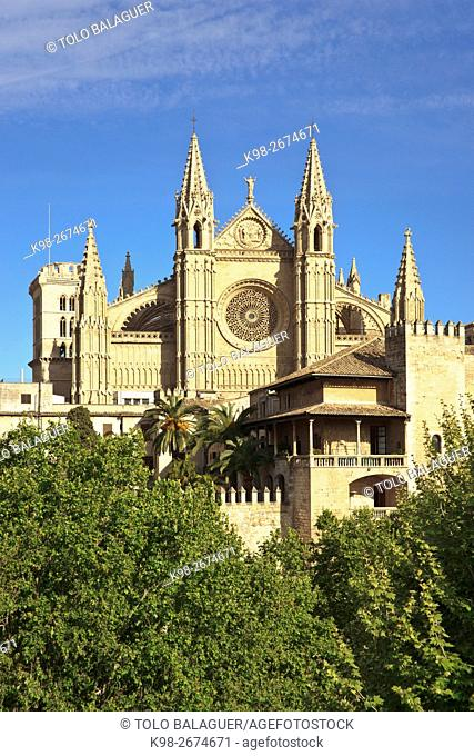 Spain, Balearic islands, Palma of Majorca, Clear sky over Palma Cathedral