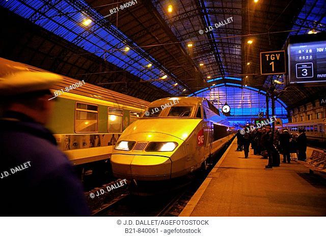 High speed TGV train at Gare Saint-Jean, Bordeaux. Gironde, Aquitaine, France