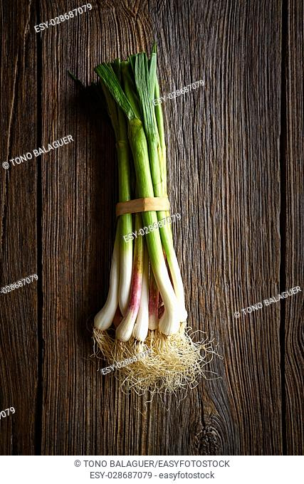 Green garlic bunch on a wooden background texture