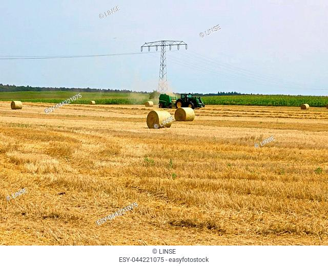 Straw harvest on the field