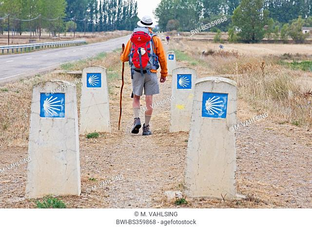 Way of St. James, direction signs with pilgrim on the way from Fromista to Palomares, Spain, Castile and Leon, Palencia