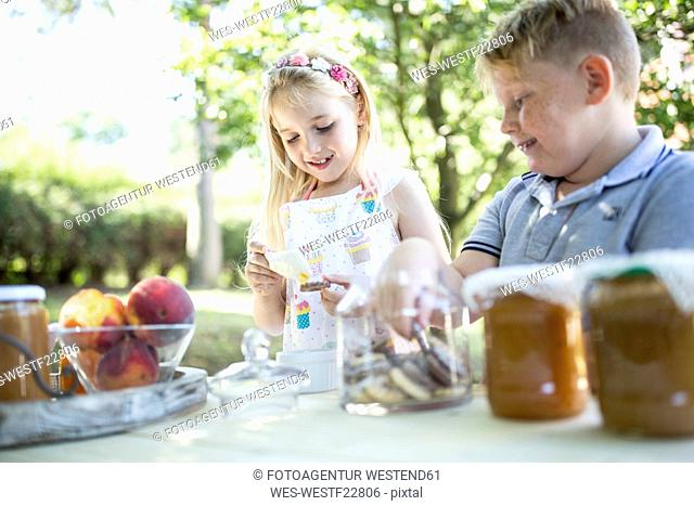 Smiling sister and brother at garden table