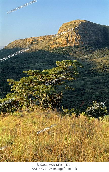 Mountains and landscape near Lydenburg, Mpumalanga, South Africa