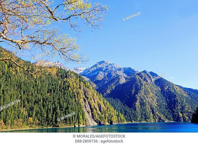 Asia, China, Sichuan province, UNESCO World Heritage Site, Jiuzhaigou National Park, Long lake