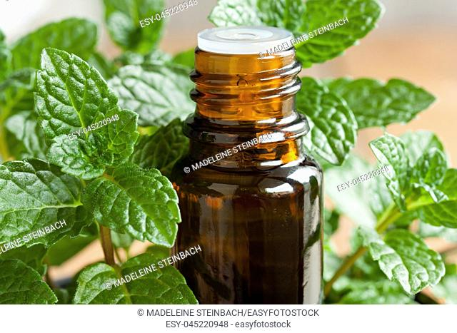 A bottle of peppermint essential oil with fresh peppermint twigs in the background